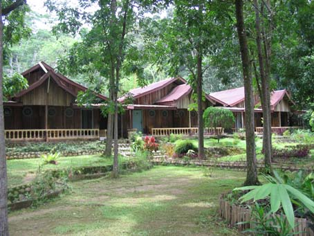 Eco-Lodge Bukit Lawang Sumatra Indonesia