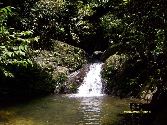 Jungle waterfall in Gunung Leuser National Park